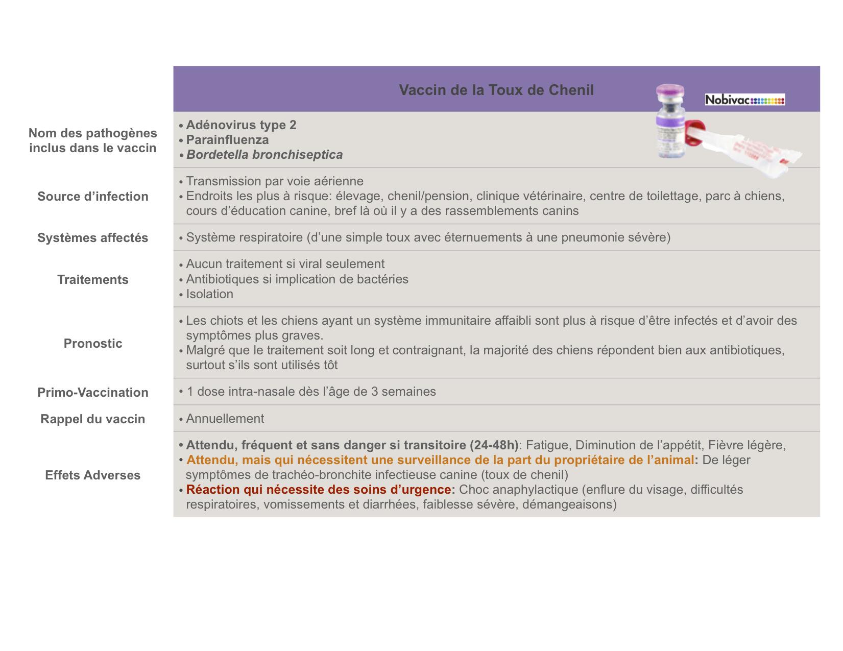 vaccin grippe du chenil