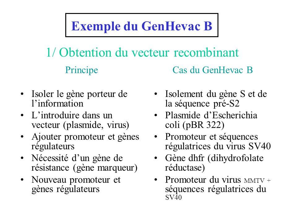 vaccin hepatite b genhevac