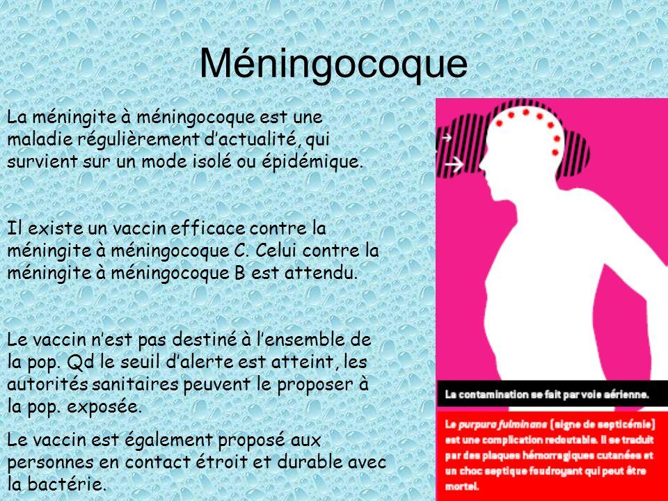 vaccin meningocoque c