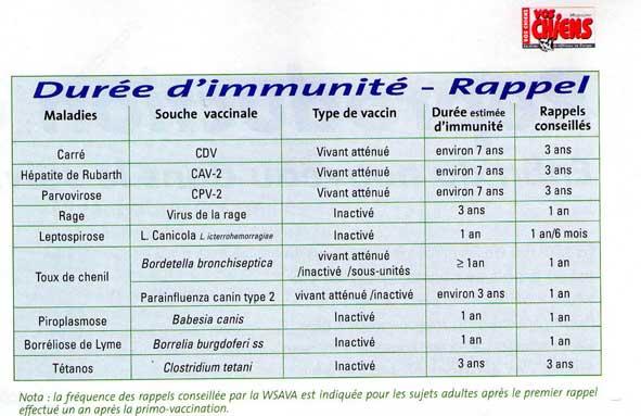 vaccin obligatoire vente chiot