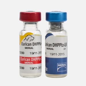 vaccin eurican dappi