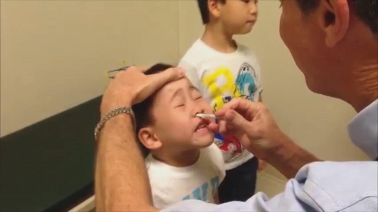 vaccin grippe intranasal