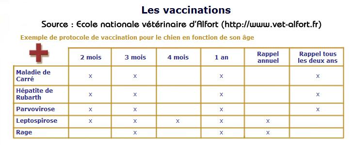 vaccin obligatoire pour un chien en france